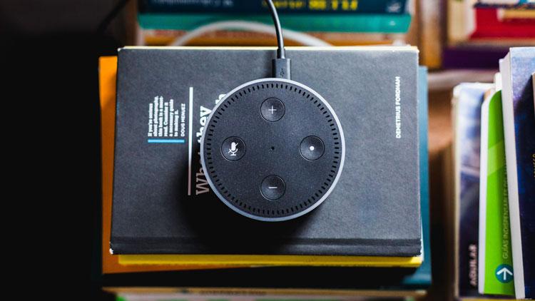 Voice Command, Voice Control